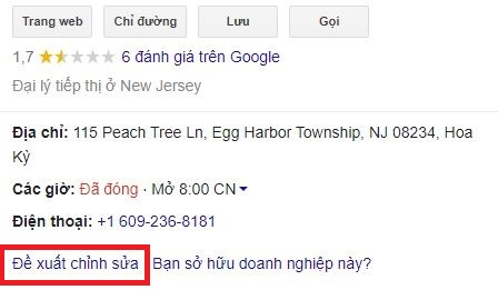 Review local seo